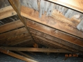 Mold on underside of roof sheeting dur to poor ventilation