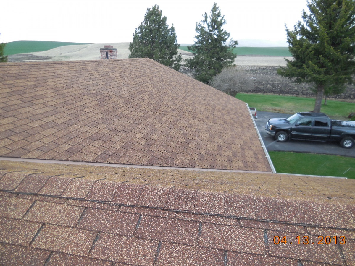 roofing shingles type 3-tab