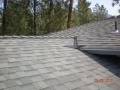 Laminated roofing shingles with metal w valley for pine needles, high profile ridge vent for better asthetics and g metal drip edge